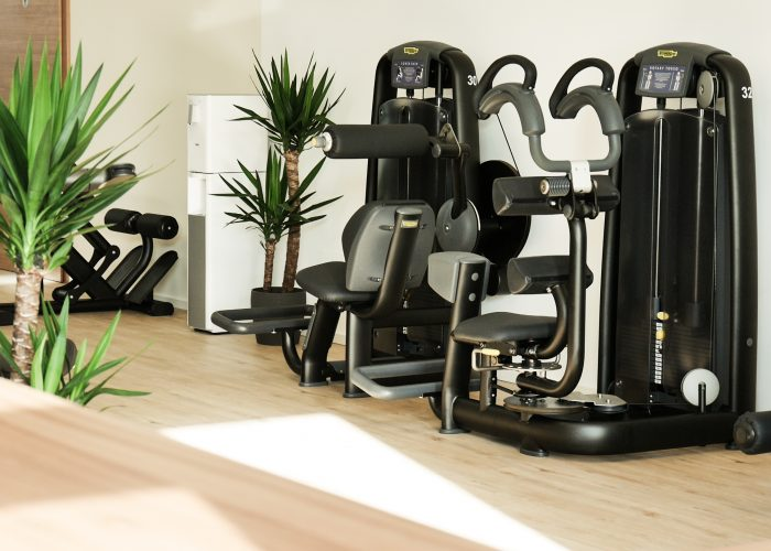EVERFIT Fitnessstudio Rückenstrecker