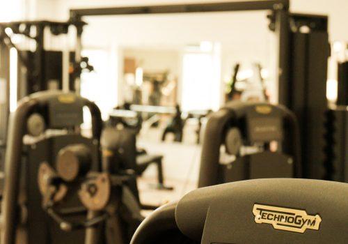 EVERFIT Fitnessstudio Technogym